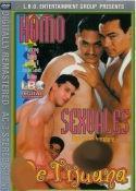 Grossansicht : Cover : Homosexuals