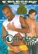 Grossansicht : Cover : Hole a day inn