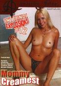Grossansicht : Cover : Internal Explosions 12